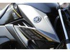 Yamaha Fazer 250 BLUEFLEX 2017